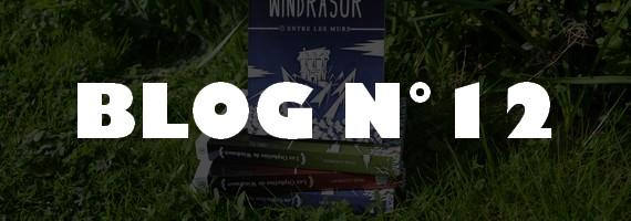 [Blog N°12] L'aventure Les Orphelins de Windrasor ne fait que commencer